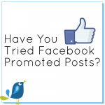 Have you tried facebook promotted posts